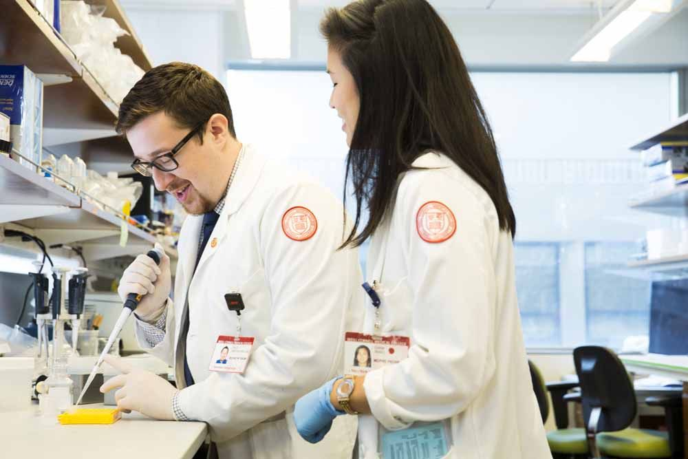 weill cornell medical college volunteer application